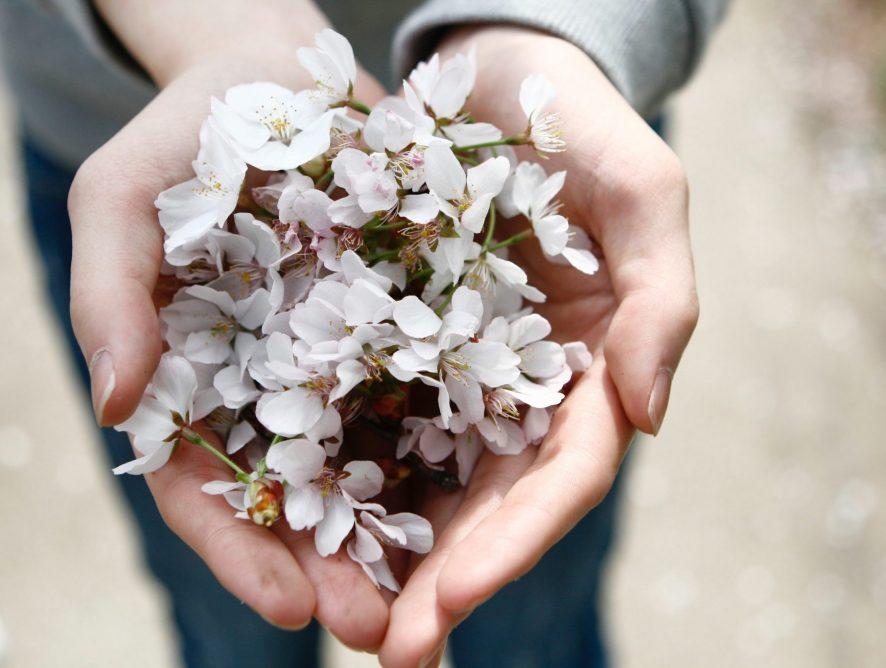 About generosity