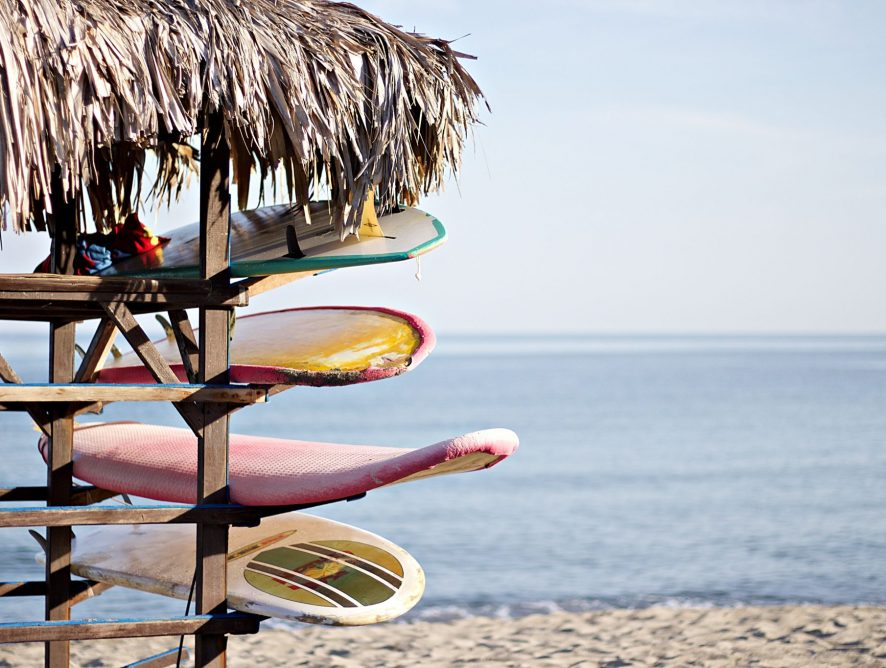Resilient Surfer